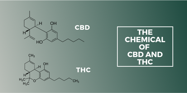 The chemical differences between CBD and THC